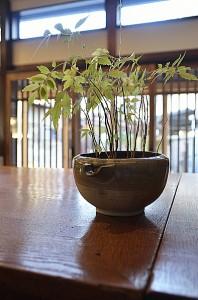 kichijoji_015